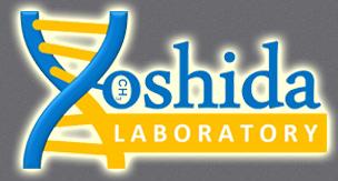 Yoshida Lab.